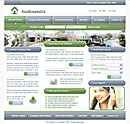 Real Estate Blue website template